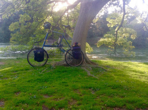 Odd bike in the Arboretum -- Photograph by Hillel Eflal