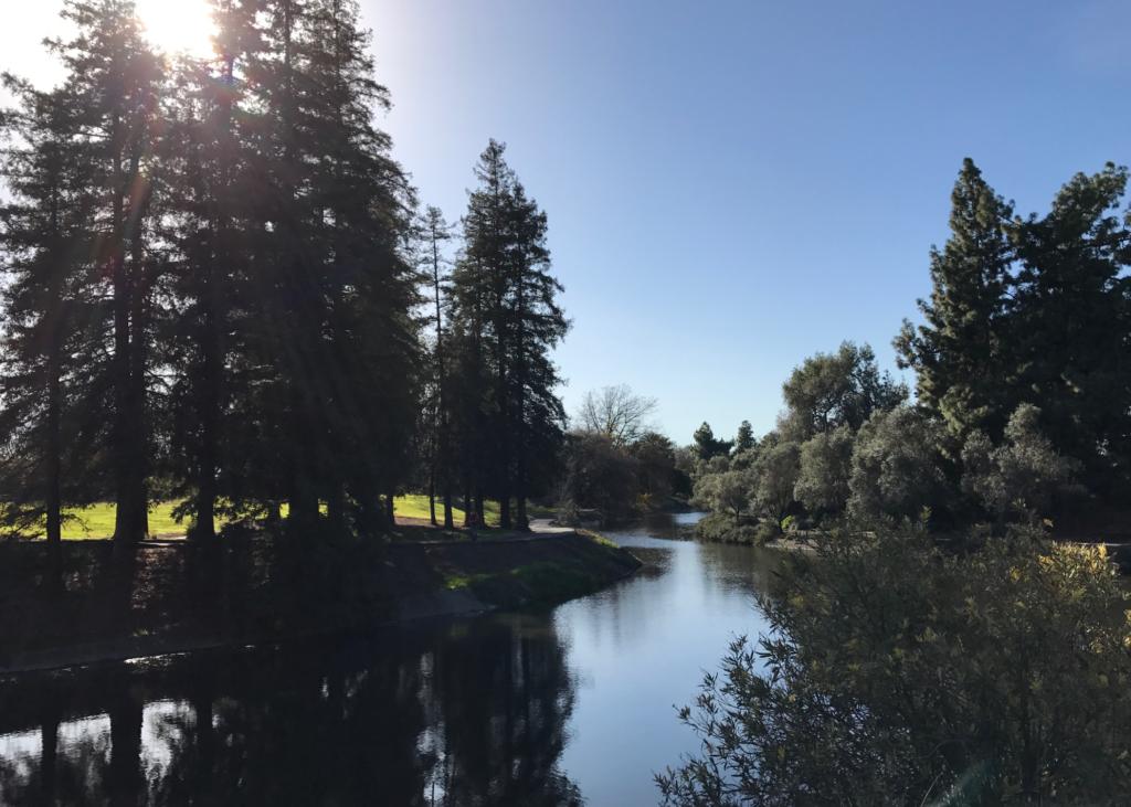 The UC Davis Arboretum