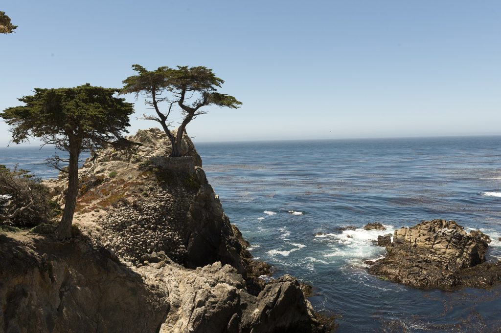 Pebble Beach Carmel